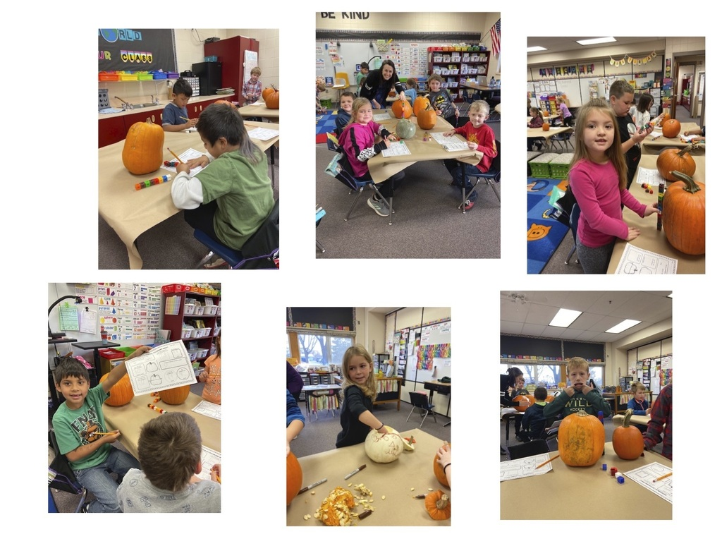 Mrs. Turbak's pumpkins1